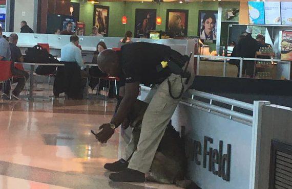 Policijos pareigūnas darė asmenukes su savo K9