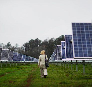 Saulės baterijos Džimio Karterio ūkyje Džordžijoje elektra aprūpina pusę miesto