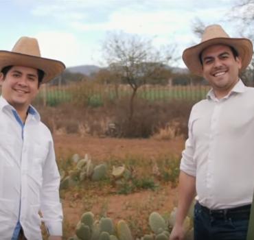 Vyrai naudoja kaktusus kuriant tvarią alternatyvą odai